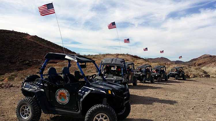 Calico Desert Discovery
