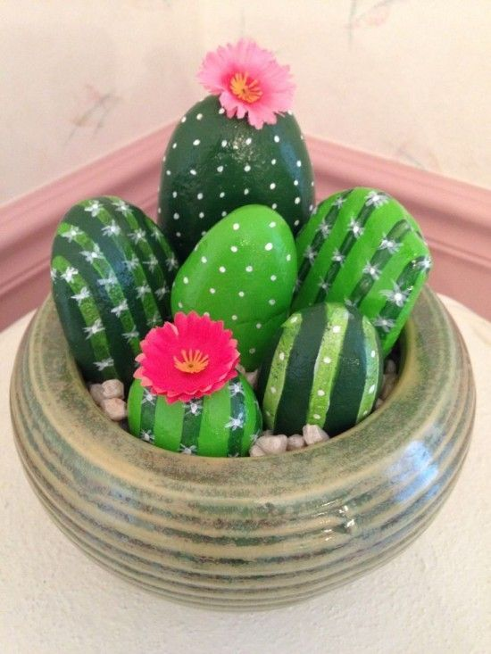 Rock Cactus Class